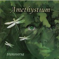Transversa mp3 Album by Amethystium