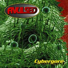 Cybergore mp3 Album by Avulsed