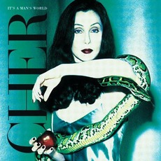 It's A Man's World mp3 Album by Cher