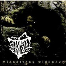 Midnattens Widunder