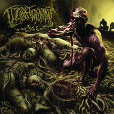 The Slow Decay Of Infested Flesh mp3 Album by Guttural Engorgement