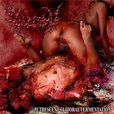 Putrescent Clitoral Fermentation mp3 Album by Vulvectomy