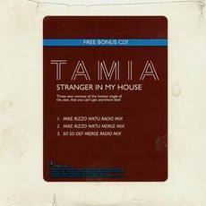 Stranger In My House mp3 Remix by Tamia