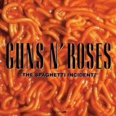 """The Spaghetti Incident?"""