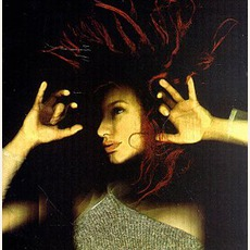 From The Choirgirl Hotel mp3 Album by Tori Amos