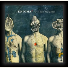 T.N.T. For The Brain (Cdm) mp3 Artist Compilation by Enigma