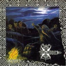 Die Ewigen Steine mp3 Album by Menhir