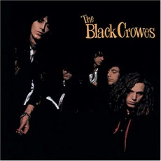 Shake Your Money Maker mp3 Album by The Black Crowes