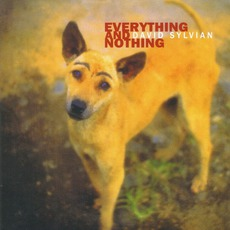 Everything And Nothing mp3 Artist Compilation by David Sylvian