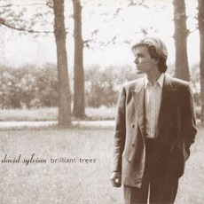 Brilliant Trees mp3 Album by David Sylvian