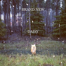 Daisy mp3 Album by Brand New