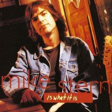 Is What It Is mp3 Album by Mike Stern