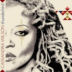 Thunderbird mp3 Album by Cassandra Wilson