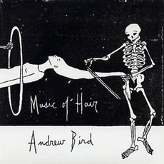 Music Of Hair mp3 Album by Andrew Bird
