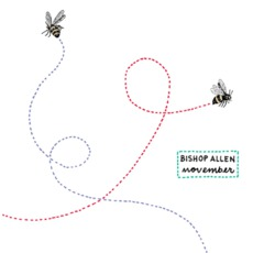 November mp3 Album by Bishop Allen