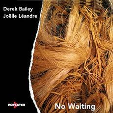 No Waiting mp3 Live by Derek Bailey & Joelle Leandre