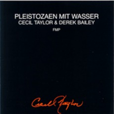 Pleistozaen Mit Wasser