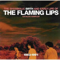 The Shambolic Birth And Early Life Of mp3 Artist Compilation by The Flaming Lips