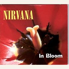 In Bloom mp3 Single by Nirvana