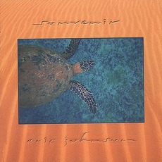 Souvenir mp3 Album by Eric Johnson