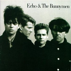 Echo & The Bunnymen mp3 Album by Echo & The Bunnymen