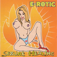 Sexual Healing by E-Rotic
