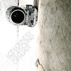 Sound Of Silver mp3 Album by LCD Soundsystem