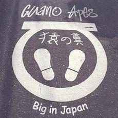 Big In Japan