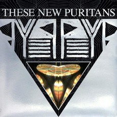 Beat Pyramid mp3 Album by These New Puritans