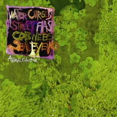 Water Curses mp3 Album by Animal Collective