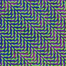Merriweather Post Pavilion mp3 Album by Animal Collective