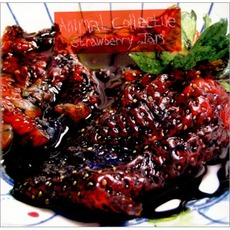 Strawberry Jam mp3 Album by Animal Collective