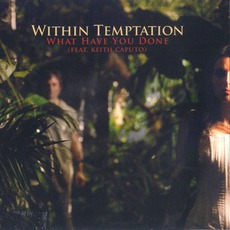 What Have You Done mp3 Single by Within Temptation