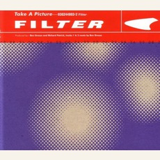 Take A Picture mp3 Single by Filter