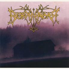 Borknagar mp3 Album by Borknagar