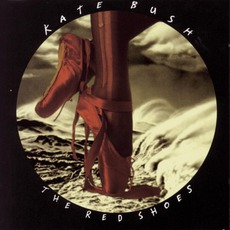 The Red Shoes mp3 Album by Kate Bush