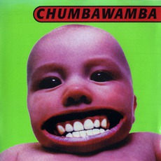 Tubthumper mp3 Album by Chumbawamba