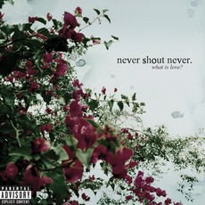 What Is Love mp3 Album by Never Shout Never