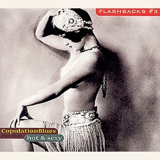 Flashbacks, Volume 3: Hot & Sexy: Copulation Blues 1926-1940