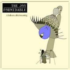 A Balloon Called Moaning mp3 Album by The Joy Formidable