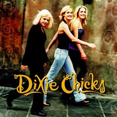 Wide Open Spaces mp3 Album by Dixie Chicks