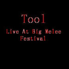 Live At Big Melee Festival