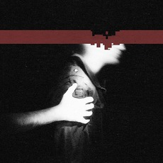 The Slip mp3 Album by Nine Inch Nails