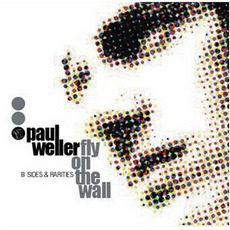 Fly On The Wall: B Sides And Rarities by Paul Weller