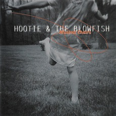 Musical Chairs mp3 Album by Hootie & the Blowfish
