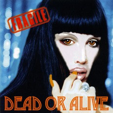 Fragile by Dead Or Alive