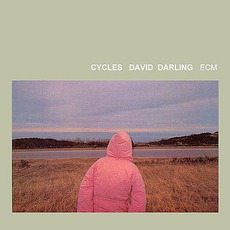 Cycles mp3 Album by David Darling