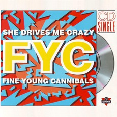 She Drives Me Crazy mp3 Single by Fine Young Cannibals