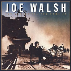 You Bought It, You Name It mp3 Album by Joe Walsh