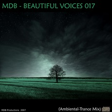 Beautiful Voices 017 (Ambiental-Trance Mix) by Various Artists